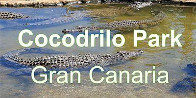 Eläinpuisto COCODRILO PARK pelastaa eläimiä