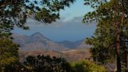 Luonto-/patikointiretki Satumetsä Tamadabaan (Gran Canaria) - kanariaTV.fi