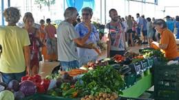 "Maalaismarkkinat ""Mercado Agricola"" San Fernandossa (Gran Canaria)"